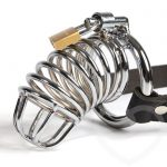 Fetish Fantasy Extreme Chastity Belt and Cock Cage - Fetish Fantasy