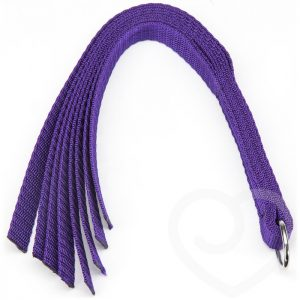 Purple Reins Beginners Flogger