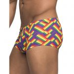 Male Power Rainbow Pride Flag Boxer Shorts - Male Power