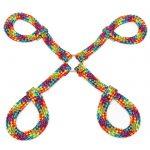 Bondage Boutique Rainbow Rope Hogtie - Bondage Boutique